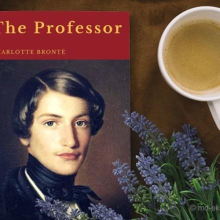 Рецензия на книгу Шарлотты Бронте Учитель